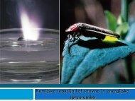 6. POGLAVJE: Energijske spremembe pri kemijski reakciji