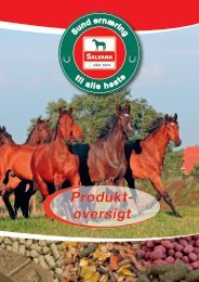 dk_katalog SALVANA nov2012 - equistro.dk