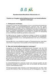 BBN Positionspapier Vergabe - Bundesverband Beruflicher ...