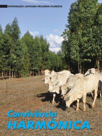 Integração lavoura-pecuária-floresta – Convivência harmônica