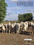Integração lavoura-pecuária-floresta – Convivência harmônica - Page 2