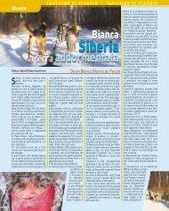 Bianca Siberia, la terra addormentata - Viaggi Avventure nel mondo