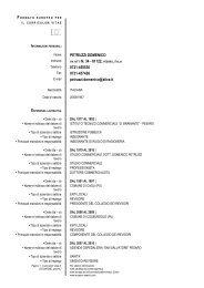 Formato Europeo per il Curriculum Vitae - Modello - Studio Petruzzi