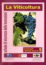 La viticoltura - Ministero del lavoro, salute e politiche sociali