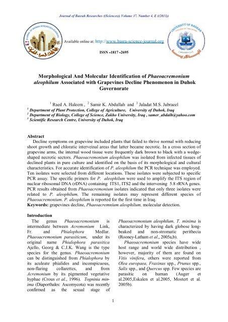 Morphological And Molecular Identification of Phaeoacremonium ...