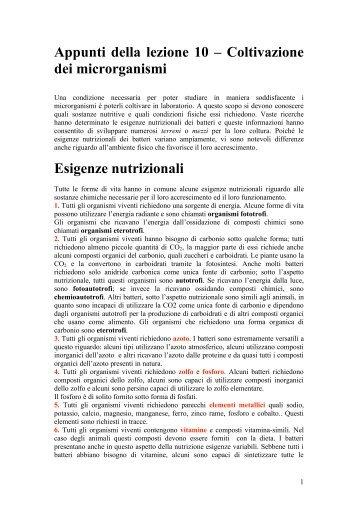 Appunti della lezione 10 – Coltivazione dei microrganismi Esigenze ...