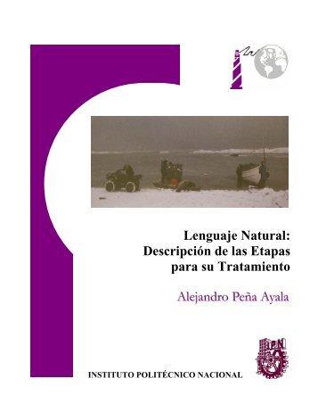 Lenguaje Natural: Descripción de las Etapas para su Tratamiento ...
