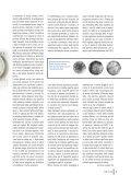 Visualizza il numero 32 di Noi&Voi - Banca San Biagio del Veneto ... - Page 7