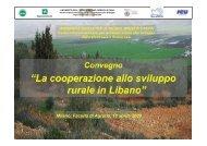 L'approccio di AVSI allo sviluppo rurale in Libano - CICSAA ...