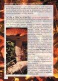 sicuri a cercar funghi - CAI Sicilia - Page 3