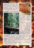 sicuri a cercar funghi - CAI Sicilia - Page 4