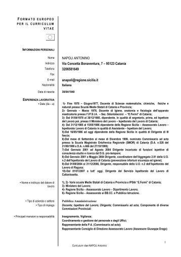 formato europeo per il curriculum vitae rtf