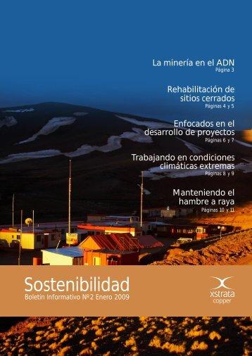 Enero 2009 - Xstrata Copper