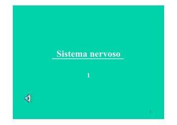 nervoso-1a - dieta-nutrizione.it