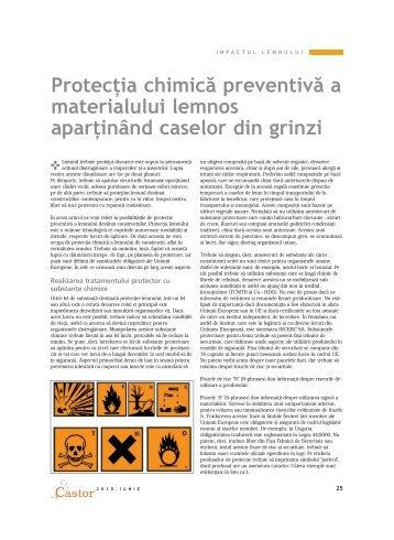 Protecţia chimică preventivă a materialului lemnos ... - Imageline
