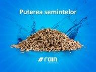 SOUL - Partener Rain International