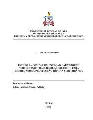 CAPÍTULO II: REVISÃO GEOLÓGICA E ... - CPRM
