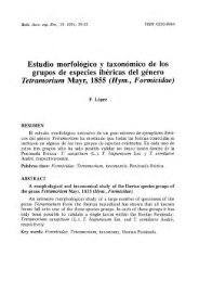 Estudio morfológico y taxonómico de los grupos de especies ...