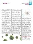Scarica il pdf - Diagnosi e Terapia - Page 5