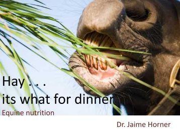 Hay - It's What's for Dinner [Dr. Jaime Horner] - BW Furlong ...