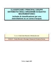 CLASSIFICARE I PRINCIPALI GRUPPI SISTEMATICI ... - C.R.E.S.T.