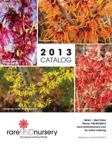 D/L The RFN Catalog Part #1 - Rhododendrons - Rare Find Nursery
