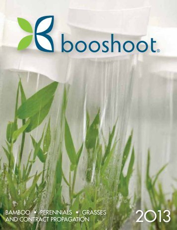 Booshoot