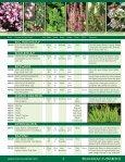 Broadleaf Evergreens - Mori Nurseries - Page 2