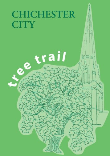 Chichester City Tree Trail - West Sussex County Council