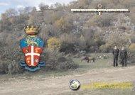 Attività operativa 2007 - Arma dei Carabinieri