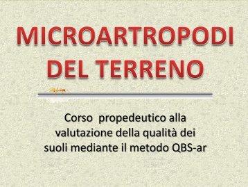 microartropodi del terreno 1 - Scuola21