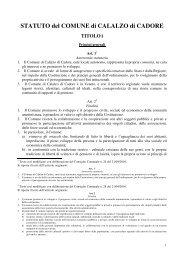 scarica Statuto con modifiche anno 2010 - Comune di Calalzo di ...