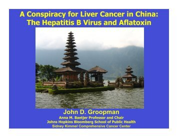 A Conspiracy for Liver Cancer in China - Johns Hopkins Bloomberg ...