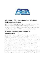 Hripunov: Oĉekuje se pozitivna odluka za Ţelezaru Smederevo ...