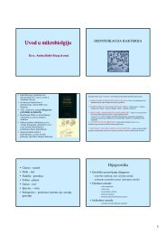Izravna mikrobiološka dijagnostika