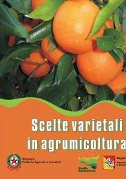 Scelte varietali in agrumicoltura - Portale dell'innovazione - Regione ...