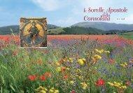 In cammino con... n° 07 - Anno 2008 - Sorelle Apostole della ...