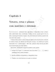 Cap´ıtulo 3 Vetores, retas e planos com matrizes e sistemas - UFSCar