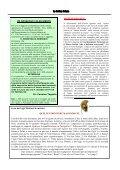 Nola – punto e a capo. Analisi, riflessioni e indicazioni per il ... - Page 5