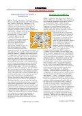 Nola – punto e a capo. Analisi, riflessioni e indicazioni per il ... - Page 7