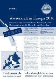 Wasserkraft in Europa 2030 - trend:research