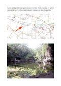 Cenote Xtokil - StoneWatch - Page 2