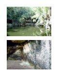 Cenote Xtokil - StoneWatch - Page 5