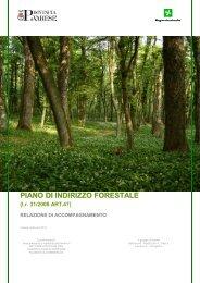 Relazione gennaio 2011 - Portale di cartografia on-line - Provincia ...
