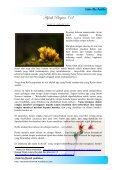 Hijrah Bagian (1) - Blog Abu Umamah - Page 3