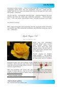 Hijrah Bagian (1) - Blog Abu Umamah - Page 7