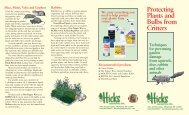 Protecting Plants and Bulbs from Critters - Hicks Nurseries, Inc.