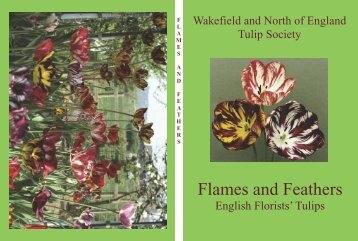 Flames and Feathers - Wakefield and North of England Tulip Society