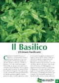 Layout 1 (Page 1) - Basilicoeco.It - Page 3