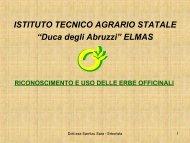 Tecnologie e tecniche per l'uso delle officinali - Istituto tecnico ...